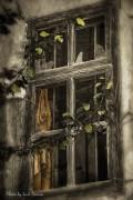 Lusifoto | Очакване | 76 харесвания
