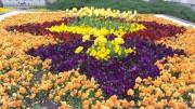 Пролет в Габрово
