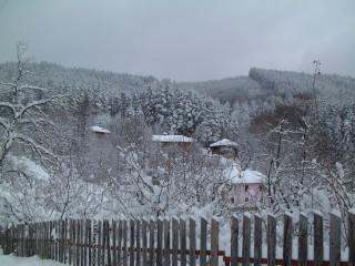 Tsanev@dir.bg | Зима в Балкана | 35 харесвания