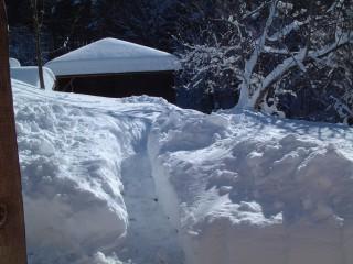 Tsanev@dir.bg | Много сняг | 2 харесвания