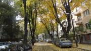 улица Елин Пелин