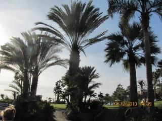 Mariana Xela | Limassol | 10 харесвания