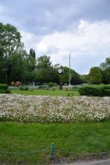 SYStemata | Пролет | 12 харесвания