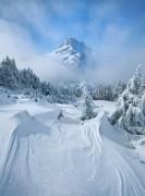 Albena.cherneva@atm.bg | зимни върхове | 143 харесвания
