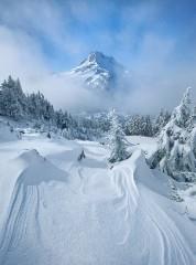 Albena.cherneva@atm.bg | зимни върхове | 133 харесвания
