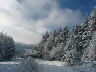 Jpeovska@abv.bg | зимна приказка | 89 харесвания
