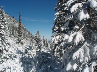 Jpeovska@abv.bg | зимата дойде | 40 харесвания