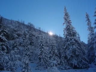 Jpeovska@abv.bg | зимно утро | 32 харесвания