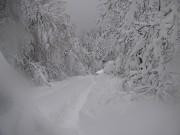снежен Кръстец