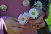 Irina_ninova | паричка в детска ръчичка | 4 харесвания