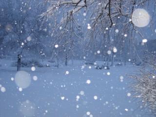 Iwell@abv.bg | обичам зимата | 76 харесвания