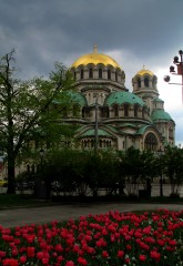 Tosheto83@abv.bg | Александър Невски | 13 харесвания