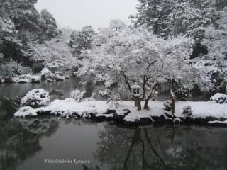 Ekaterinatg@hotmail.com | Снежно езеро | 31 харесвания