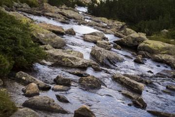 Amandalena | Пиринска река | 3 харесвания