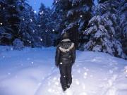 Снежна нощ