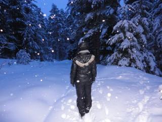 Mufbg@abv.bg | Снежна нощ | 29 харесвания