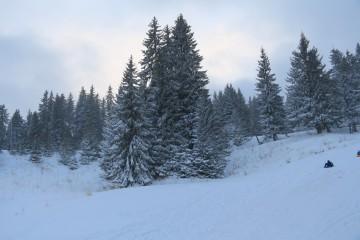 Тачи | Люта зима в Пампорово | 2 харесвания