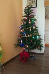Evelina.vatashka@gmail.com | Коледна елха в златно и червено | 12 харесвания