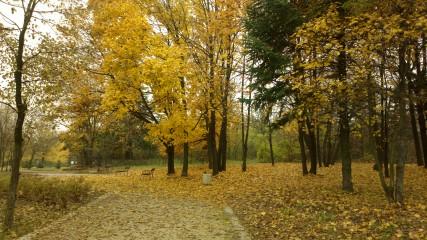 Fau1@abv.bg | Есен | 11 харесвания