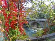 Есенна красота
