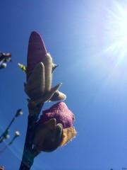 ива87 | Честита Пролет! | 22 харесвания