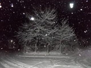 Iasen | Церово - сняг | 3 харесвания