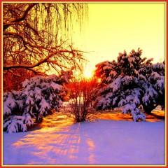 Aivaceda   Winter Sunset   67 харесвания