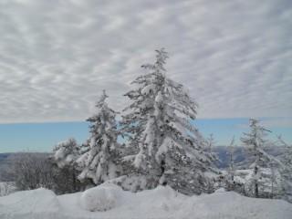 Vendeta.angelova@gmail.com   winter sky   17 харесвания