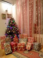 Dzipi79 | Коледа 2015 | 18 харесвания